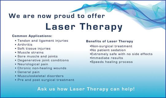 Freeman Holland | Laser Therapy - Class IV "|541|319|?|en|2|3b2542fadc1843a52c951b32e523c746|False|UNLIKELY|0.3169046938419342